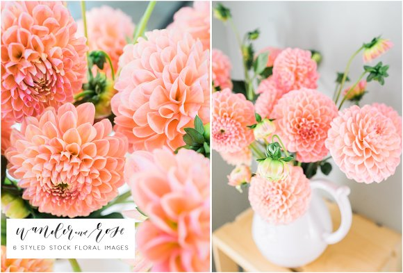 Dahlia Floral Styled Stock Images in Instagram Templates