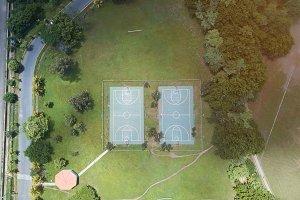 Sport green field