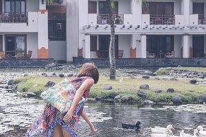 A woman in pareo feeds grey lag geese and goslings on the lake close to luxury hotel in Nusa Dua, tropical island of Bali, Indonesia.