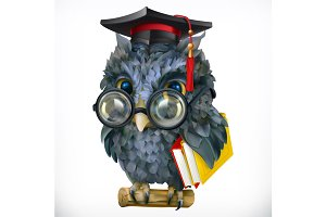 Wise owl. 3d vector icon