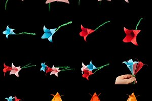 Origami flowers isolated