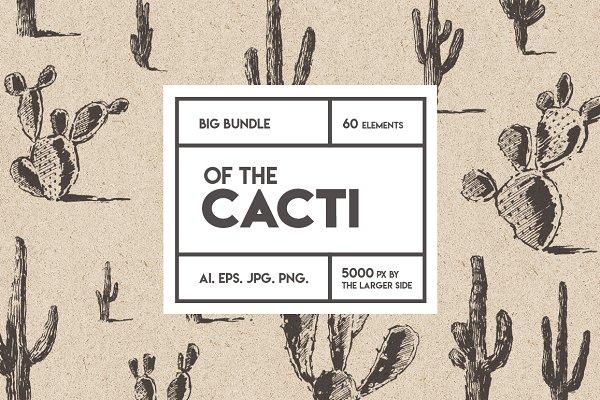 Big cacti bundle, sketch style