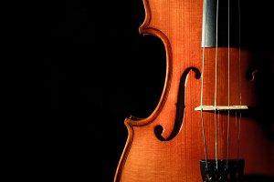 Closeup Violin orchestra