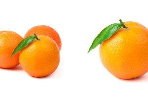 Group mandarins white isolated