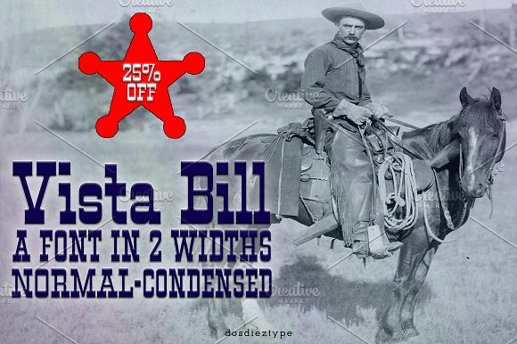 Vista Bill Western Style Font Bundle