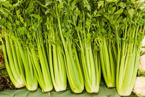 Green celery at the market