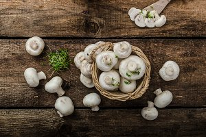 Mushrooms raw,  fresh and bio