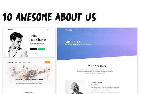 Ramro Web UI Kit About Us