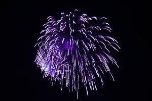 Lilac fireworks
