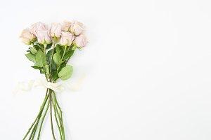 Pink Rose Femme Mockup 8