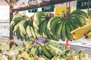 Bunch of green and yellow bananas hanging in the supermarket. Bali island, Indonesia.
