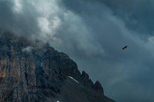 Eagle soaring near rock