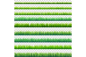 Grass isolated on transparent background set. Green meadow. Nature background. Spring, summer time.
