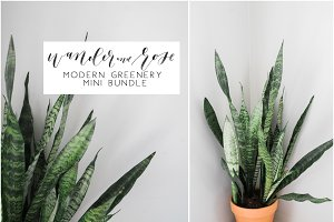 Modern Greenery Mini Bundle