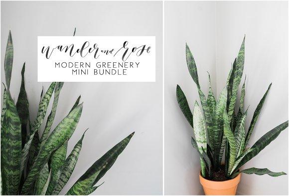 Modern Greenery Mini Bundle