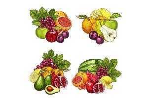 Vector sketch icons of exotic garden fruits bunch