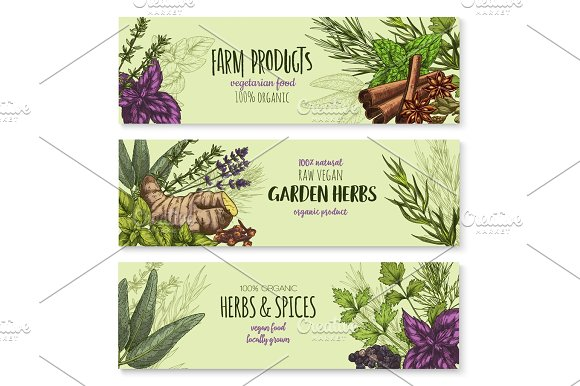 Vector Banners Set Of Natural Spices And Herbs