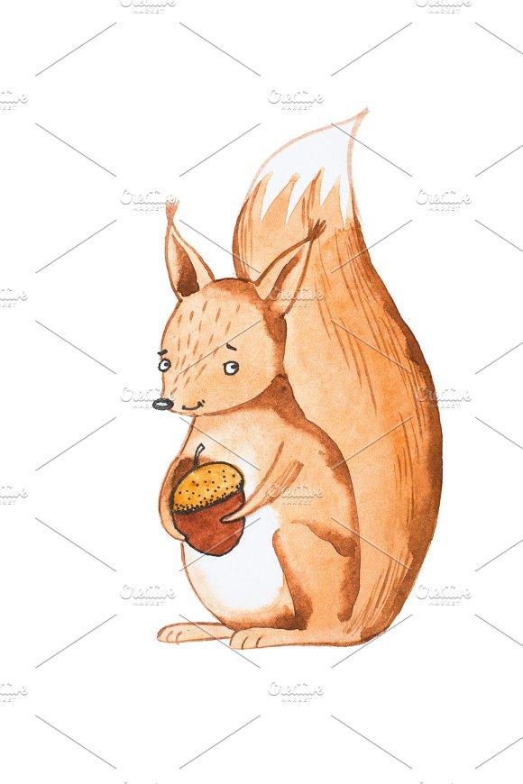Hand Drawn Portrait Of Cute Squirrel Holding Acorn