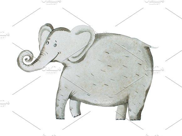 Watercolor Hand Draw Of Elephant Aquarelle Illustration