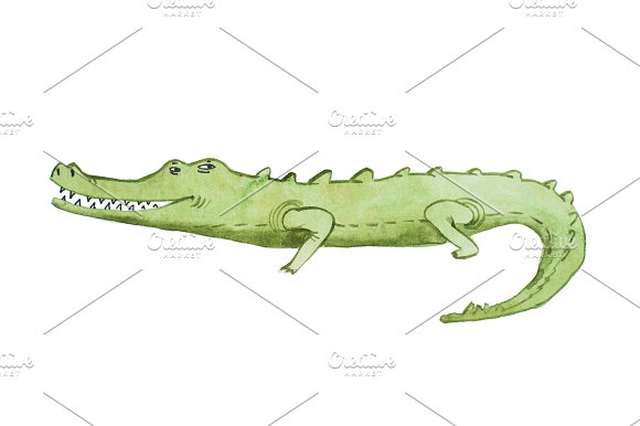 Watercolor Illustration Of Crocodile Hand Drawn Aquarelle