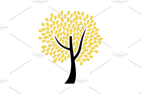 Ornamental Tree With Golden Leaves