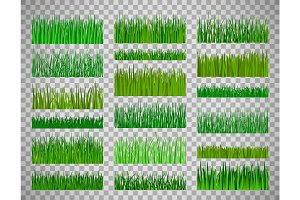 Grass border set on transparent background