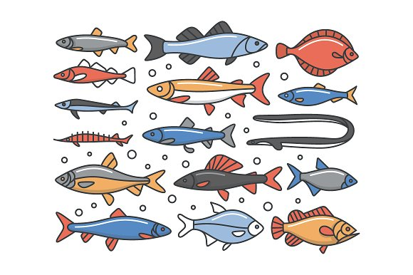 Fish Outline Icon Set