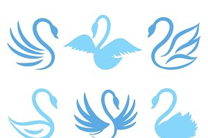 Swan icons for natural care