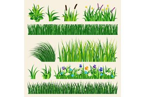 Grass nature green element vector illustration.