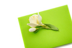 Close up of green envelope with flower