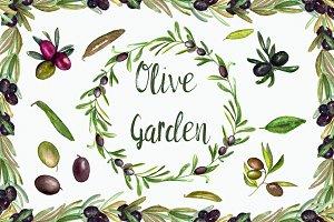 Watercolor Olive Garden Clipart