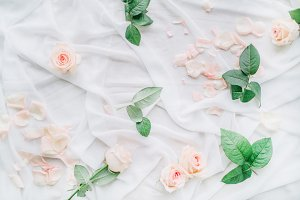 Festive background with roses