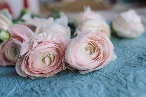 pale pink ranunculus bouquet