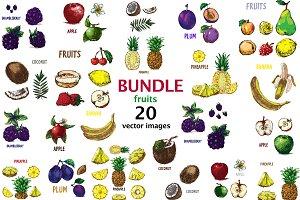 20 fruits vectors bundle 1