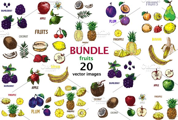 20 Fruits Vectors Bundle 1