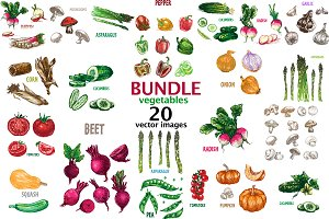 20 vectors vegetables bundle 1