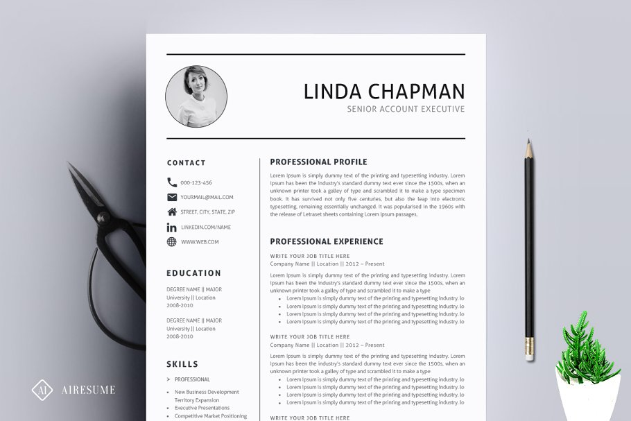 Professional Resume/CV Template ~ Resume Templates ...