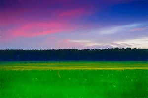 Vivid sunset meadow landscape painting background