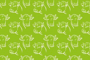 Cow, green background