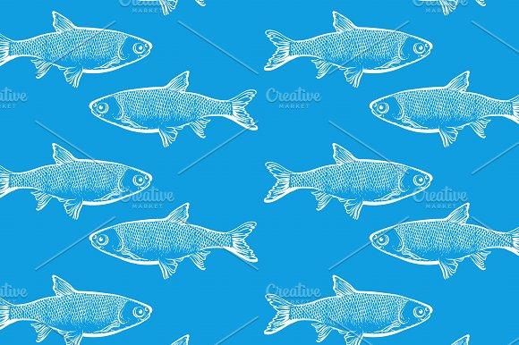 Fish Blue Background