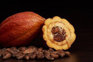 Raw cacao pod