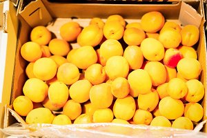Apricots At The Supermarket