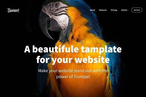 Trumpet A Premium HTML Template