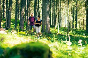 Hiking Seniors in the Forest
