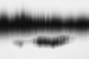Horizontal black and white motion blur abstract forest with refl