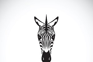 Vector of an zebra face. Animals.