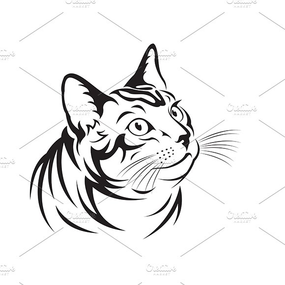Vector Of A Cat Pet Animal