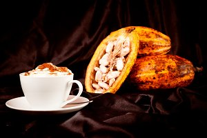 Hot Chocolate With Cocoa Pods On Black