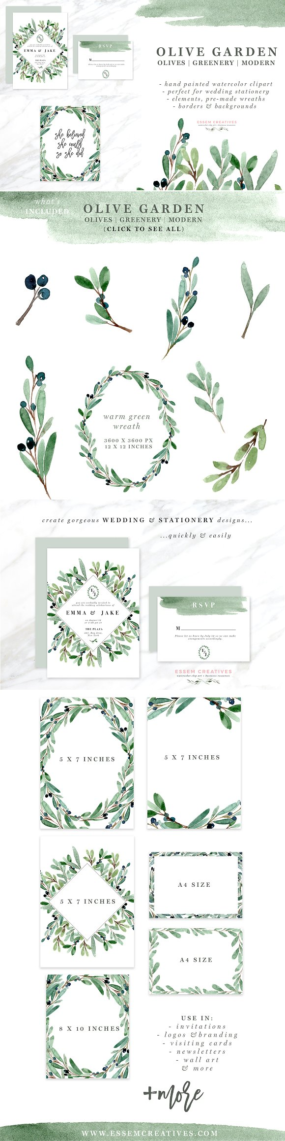 Watercolor Olive Branch Clipart