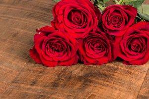 Roses in corner